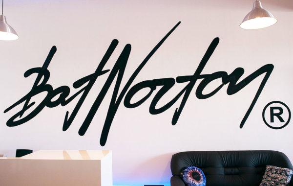 Логотип BatNorton