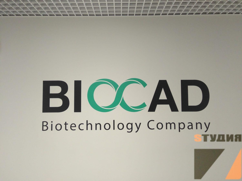 Роспись стен Коридор Biocad
