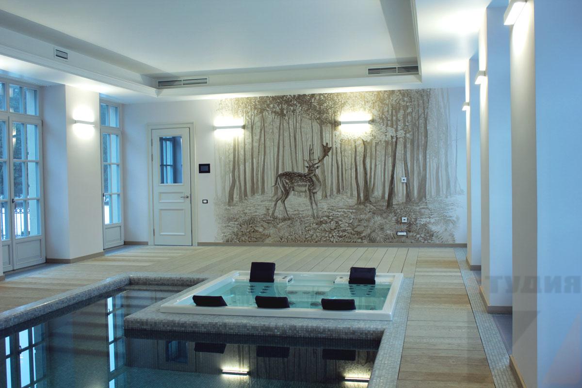 Роспись стен Монохромные пейзажи в бассейне